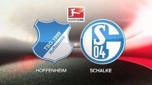 hoffenheim_schalke_25eylul2016_futboltr