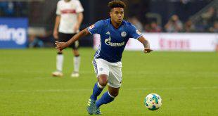 Hoffenheim – Schalke İddaa Tahmini 23.9.2017